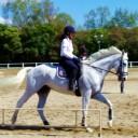 乗馬プライベートレッスンコース
