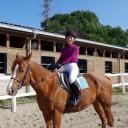 プレミアム体験乗馬コース
