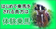体験乗馬サブバナー