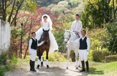 サンシャイン青山 馬イベント