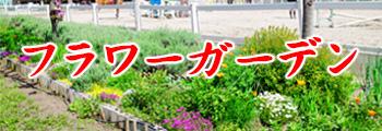 kyogikaibana